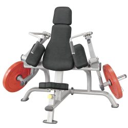 Body-Solid Tricep Extension Machine (PLTE)